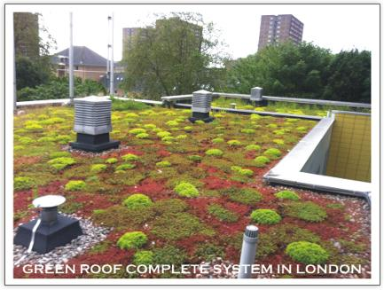 An Intensive Roof Is Also Referred To As A Roof Garden Or Living Roof. An  Intensive Roof Requires The Same Level Of Care And Attention As Any  Traditional ...